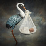Baby boy with stork